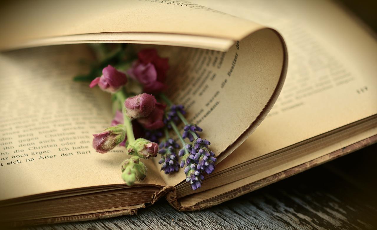 Libro con una flor